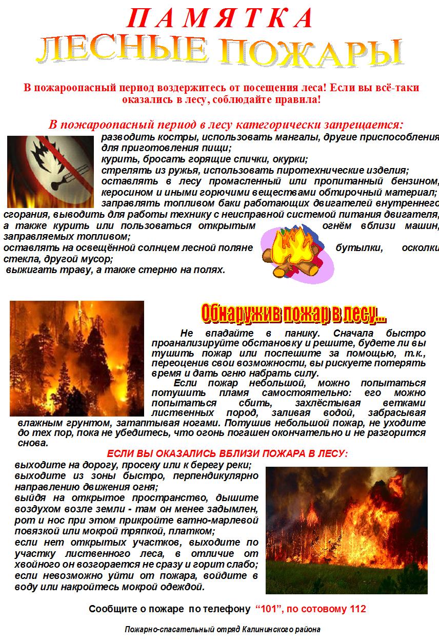 Лес_пожары